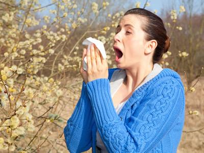 Heuschnupfen entsteht durch unterbeschäftigte Immunkräfte