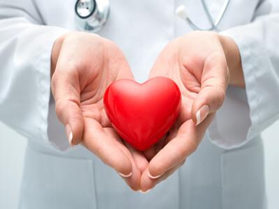 Wie hängen der Cholesterinspiegel und Herz-Kreislauf-Erkrankungen zusammen?